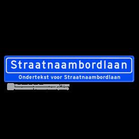 Straatnaambord 18 karakters 1000x200 mm + ondertekst NEN 1772 cadeau, kado, Straatnaam kado, eigen tekst op een bord, NEN1772, reflecterend bord, officieel straatnaam, ondertekst, relatiegeschenk, straatnaamborden